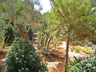 guba + sgard Landschaftsarchitekten Mediterranean style garden
