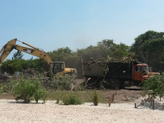 Site Clearing:   by Tree Felling Johannesburg