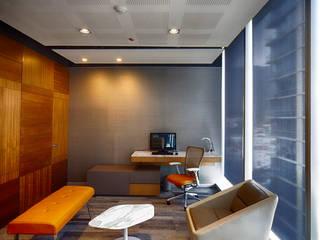 by IAARQ (Ibarra Aragón Arquitectura SC)