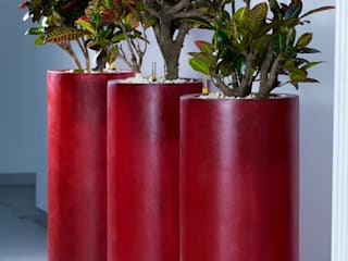 Raumbegrünung mit Fiberglas arts&more - Raumbegrünung Moderner Flur, Diele & Treppenhaus Plastik Rot