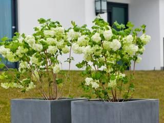 Fiberstone Pflanzgefäße arts&more - Raumbegrünung GartenBlumentöpfe und Vasen Beton Grau