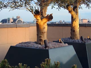 Roof terrace ideas MyLandscapes Garden Design 露臺