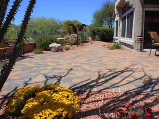 Jardines modernos de D&V Landscaping Services LLC Moderno