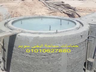 حمام سباحة اوفرفلو:  حديقة تنفيذ حمامات سباحة ايجي سويم