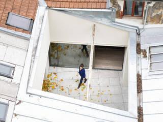 Modern Garden by ATELIER JMCA Modern