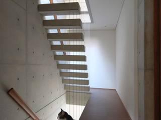 2コートハウス:仕切りつつ繋がるワンルームでネコと緑豊かに暮らす の Hirodesign.jp モダン