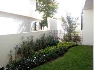 Jardín lateral de Verde Lavanda Moderno