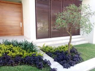 Jardín frontal de Verde Lavanda Moderno