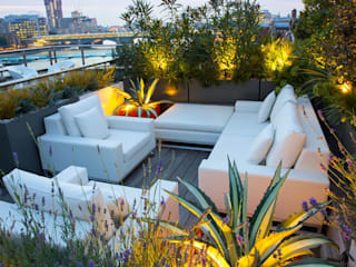 Roof terrace planting ideas MyLandscapes Garden Design 露臺
