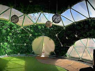 artificial green wall dome garden:   by Hedged In Ltd