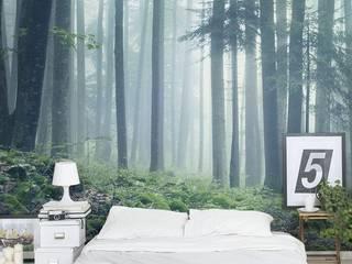 SK Concept Duvar Kağıtları ve Kumaş  – Digital Baskı Duvar Kağıdı - Forest :  tarz