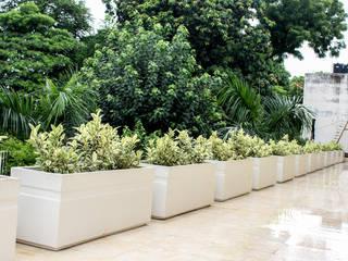 Terrace Garden Decor at Civil Lines, Delhi Mediterranean style balcony, veranda & terrace by Grecor Mediterranean