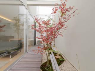 Zen garden by 一級建築士事務所 株式会社KADeL, Modern