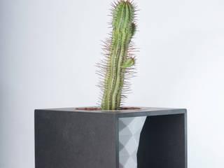 modern  by Juan Calavera, Modern