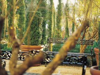 Descanso: Jardines con piedras de estilo  de Margarita Jiménez moreno