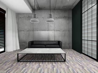 Living room by Projektownia Marzena Dąbrowska, Industrial