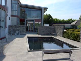 Aufenthaltsbereich und Büroeingang mit Koiteich RAUCH Gaten- und Landschaftsbau GbR Moderne Geschäftsräume & Stores Beton Grau