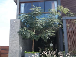 detalle ingreso: Jardines en la fachada de estilo  por Verde Lavanda
