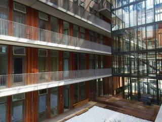 Vườn phong cách hiện đại bởi TEKTON architekten Hiện đại