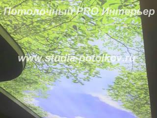 световой потолок Кухня в стиле модерн от студия Потолочный PRO Интерьер Модерн