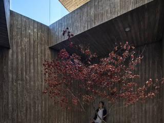 디자인그룹 콜라보 Jardines de estilo moderno
