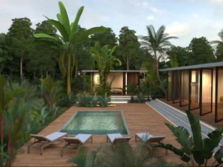 CASA PALMERA: Albercas de estilo minimalista por JSM Arquitectos