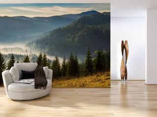 Fototapeta las w górach: styl , w kategorii  zaprojektowany przez REDRO