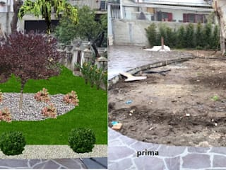 fantasia del progettista Piante Macrì Giardino moderno