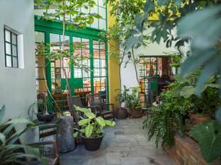 Casa Alrededor del Arbol: Jardines de estilo  por Bojorquez Arquitectos SA de CV