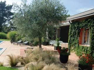 Jardines de estilo  por KAEL Createur de jardins,