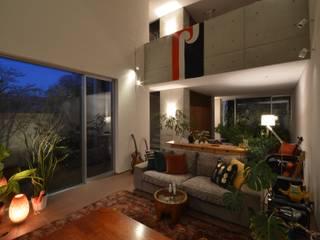 2コートハウス:仕切りつつ繋がるワンルームでネコと緑豊かに暮らす モダンデザインの リビング の Hirodesign.jp モダン