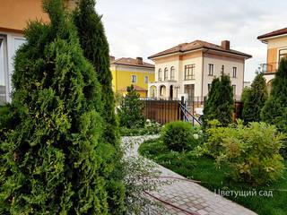Ландшафтный дизайн участка 8 соток:  в . Автор – Цветущий сад