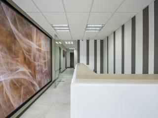 OFICINA VISTA HERMOSA Estudios y despachos modernos de ESTUDIO TANGUMA Moderno