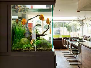 Projects Modern kitchen by Ensoul Modern