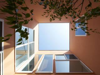中庭からの見上げ: 余田正徳/株式会社YODAアーキテクツが手掛けた庭です。