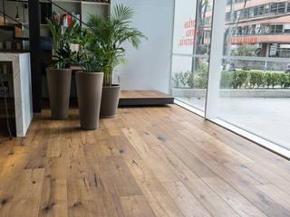 Pisos Millenium 展覽中心 木頭 Amber/Gold