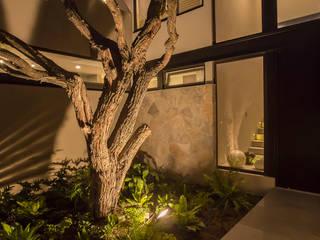 Loyola Arquitectos Jardines de estilo moderno