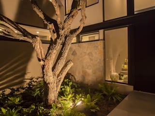 Modern style gardens by Loyola Arquitectos Modern