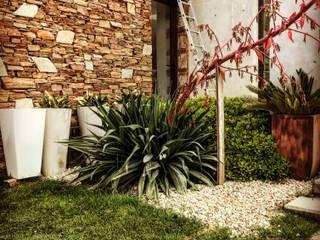 Jardín Moderno en Rumencó - Mar del Plata Jardines modernos: Ideas, imágenes y decoración de Vivero Antoniucci S.A. Moderno