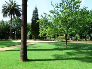 Taman Modern Oleh Labirinto - jardins Modern