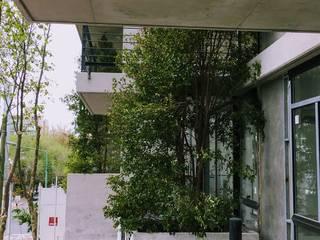 Edificio Verde en Mar del Plata: Jardines de estilo  por Vivero Antoniucci S.A.