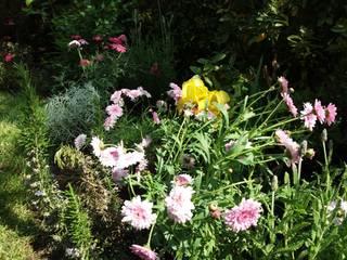 Detalle Alstromerias: Antejardines de estilo  por Deck and Garden