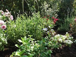 Macizo vegetal: Antejardines de estilo  por Deck and Garden