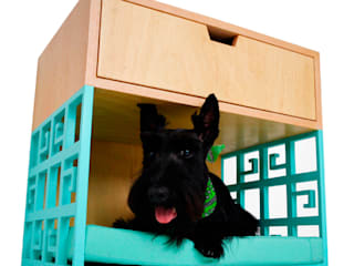 Mobiliario Pet Friendly de Estudio Raya Moderno