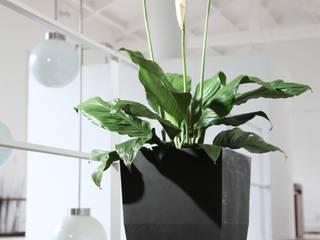 Matera 40cm :  de estilo  por Viridis Productos Eco Amigables