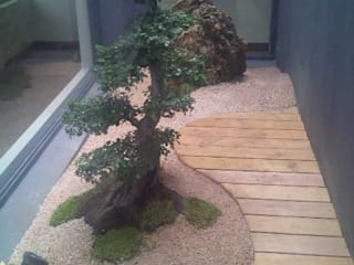 CABELO Asian style garden by Japanese Garden Concepts Asian