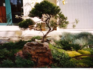 JOFFE Asian style garden by Japanese Garden Concepts Asian