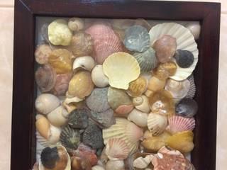 conchas de várias cores:   por Inês Florindo Lopes
