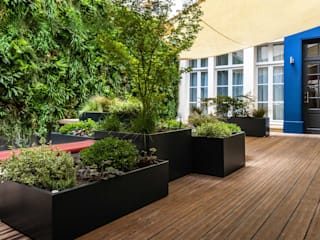 ATELIER SO GREEN Balconies, verandas & terraces Plants & flowers