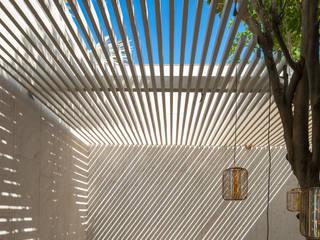 Garden Design Moderner Balkon, Veranda & Terrasse von Ecologic City Garden - Paul Marie Creation Modern